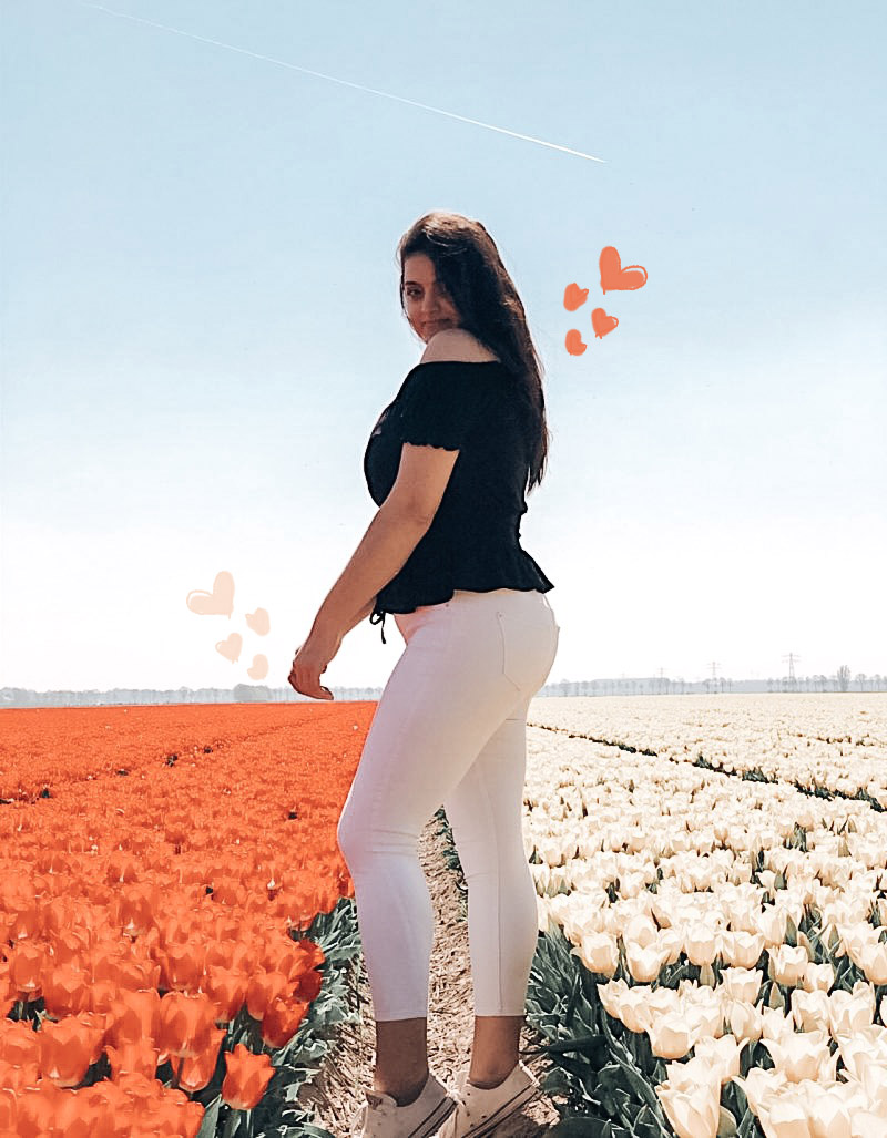 A Non-Touristy Guide To The Tulip Fields In The Netherlands