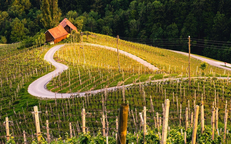 heart-shaped-road-slovenia-romantic-destinations-europe
