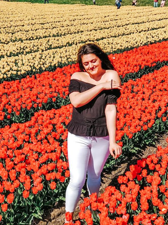 tulips-netherlands-solo-female-travel-europe
